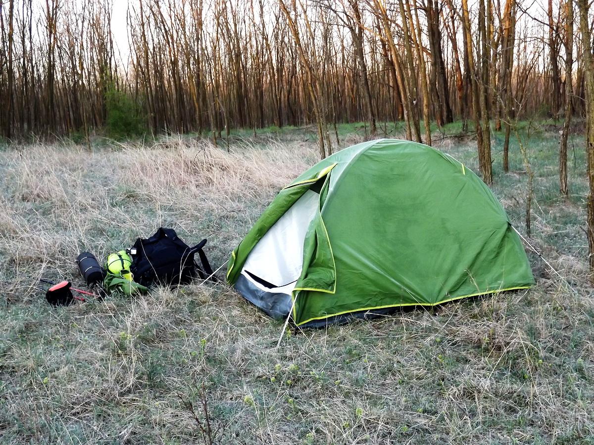 Fagyos hajnal az Alföldi Kéktúrán a Sükösd melletti Józsefteleki-erdőben