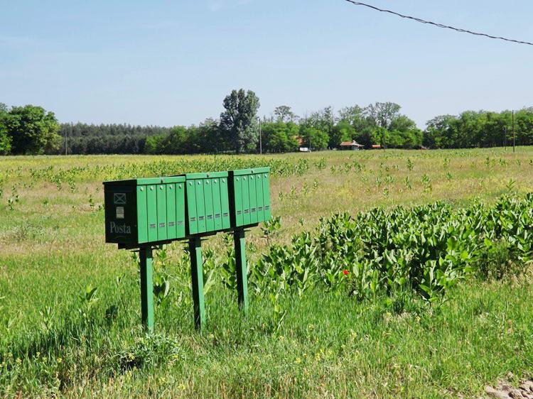 Postaládák a tanyák közötti földúton