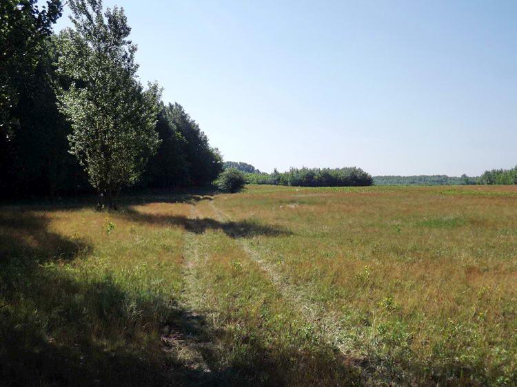A III. Körzet tanyái mögötti réteken