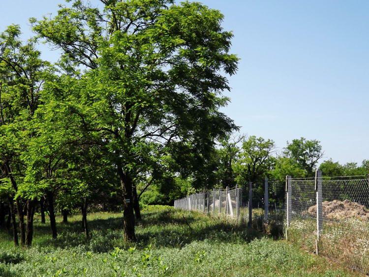 Kerítés mellett Jánostelek közelében
