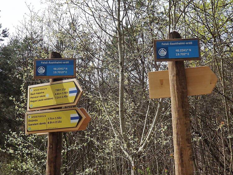 Nyilazott útjelző táblák az erdőben