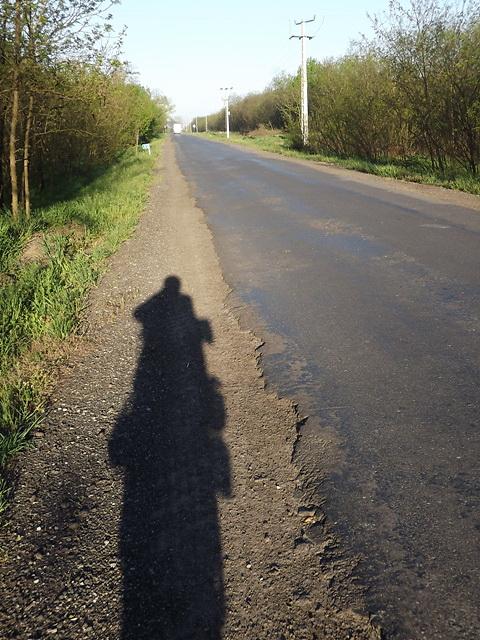 Langaléta óriás az árnyékom a dóci bekötőút padkáján