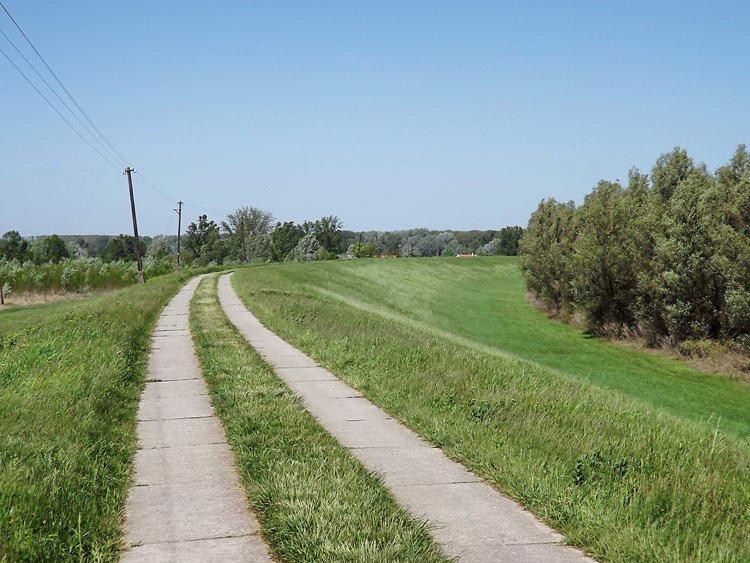 A Tisza gátján gyalogoltam vagy másfél kilométert a kompig