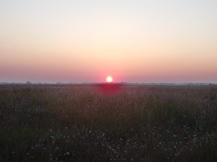 Napkelte a mezőkön