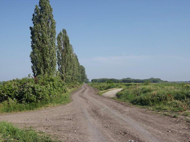 Egy újabb széles, poros földút