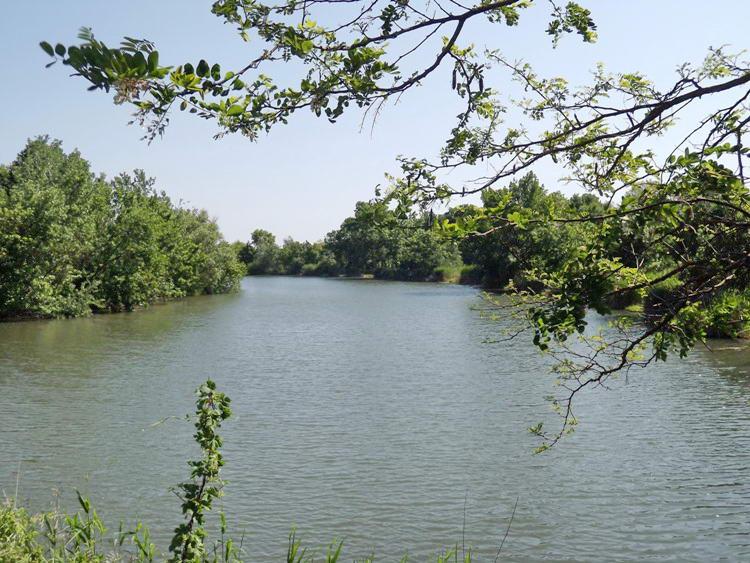 A Szarvasi-Holt-Körös a hídról nézve 1.