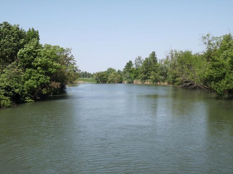 A Szarvasi-Holt-Körös a hídról nézve 2.