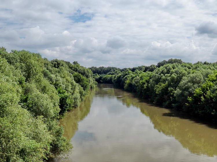 A Sebes-Körös a hídról fényképezve