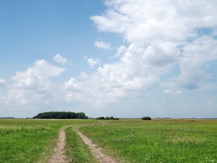 A Sároséri-major után értem el a kaszálókat, legelőket