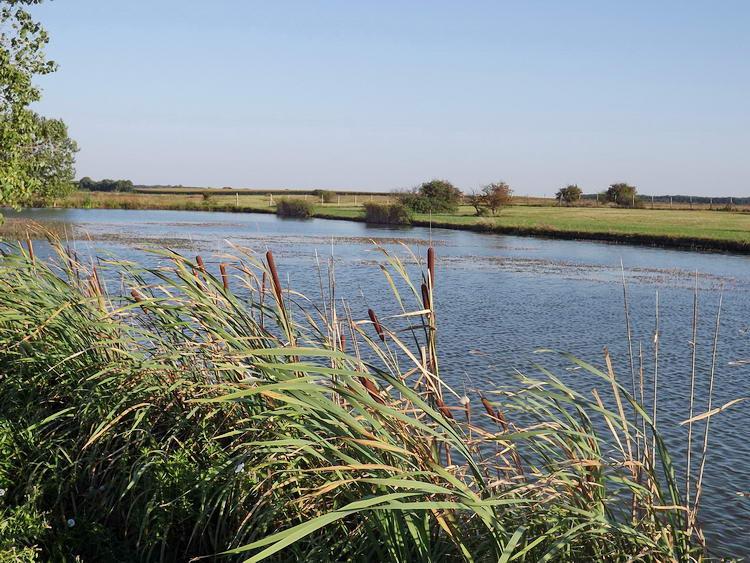 Rendben tartott, bekerített horgásztó a Bojtra vezető országút előtt