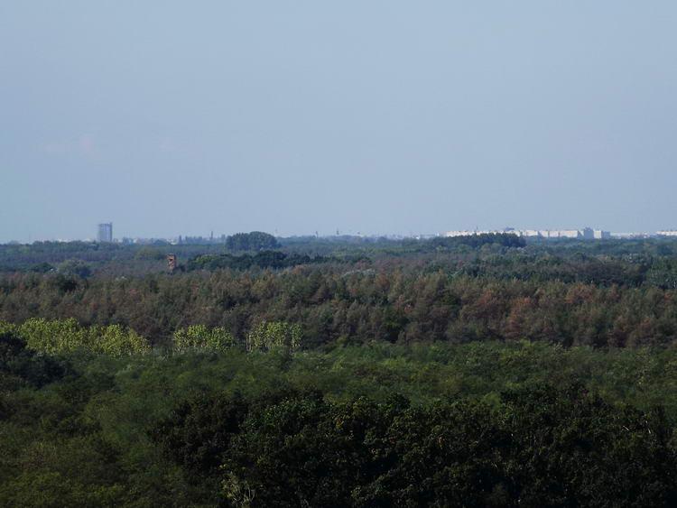 Kilátás a távoli Debrecenre a torony legfelső szintjéről