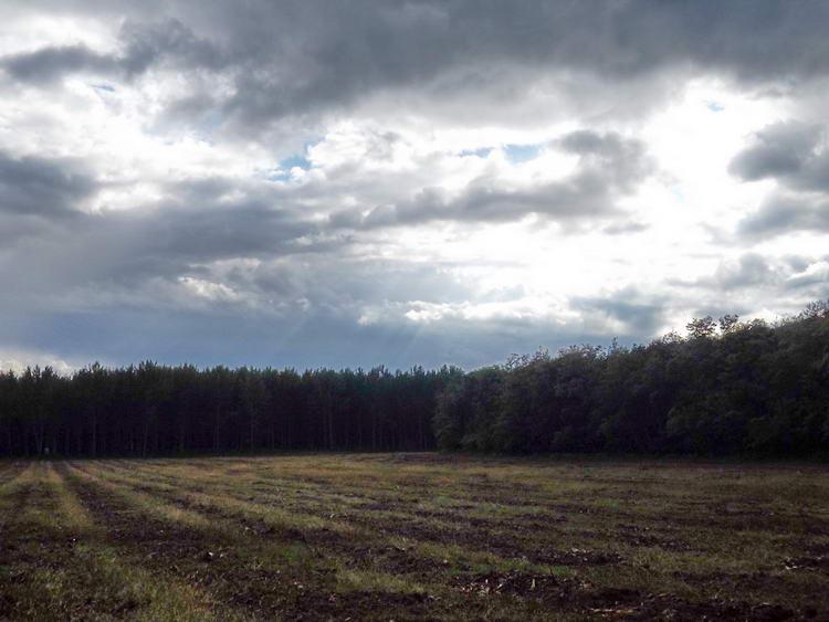 A hirtelen jött zápor után kezd felszakadozni a felhőzet