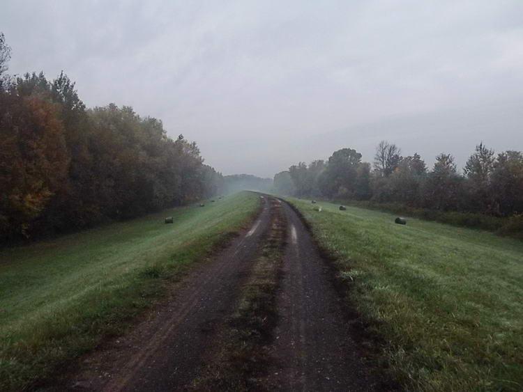 Vékony köd gátolja a kilátást a Tisza gátján