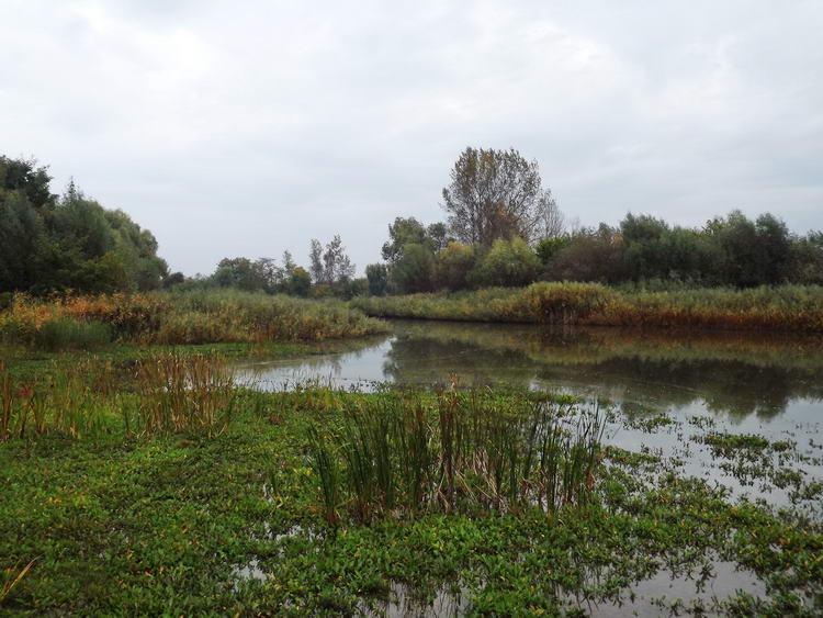 Karcsa - A Karcsa-csatorna tóvá szélesedik a faluban