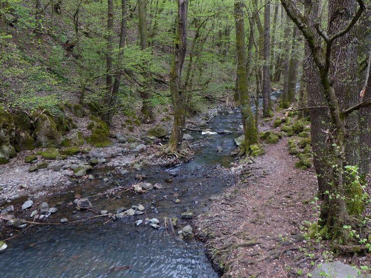 A Bükkös-patak további útja a Dömör-kapu után