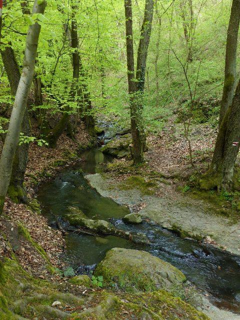 Az Apát-kúti-patak