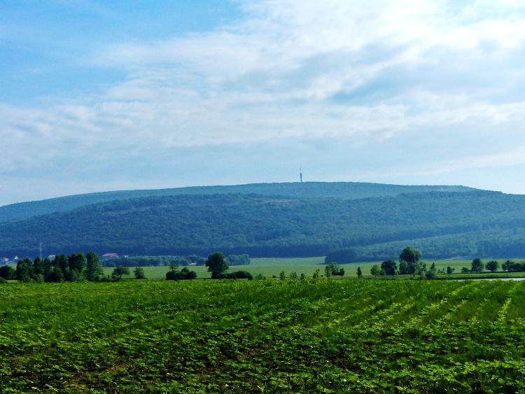 Kilátás a Vértestolna melletti mezőkről a Gerecse-hegyre, a tájegység legmagasabb hegyére.