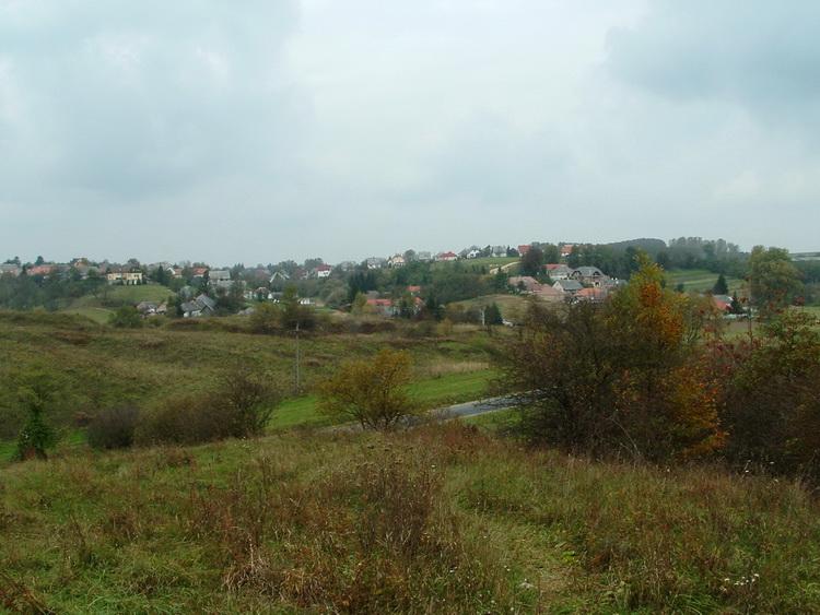 The view of Borzavár village
