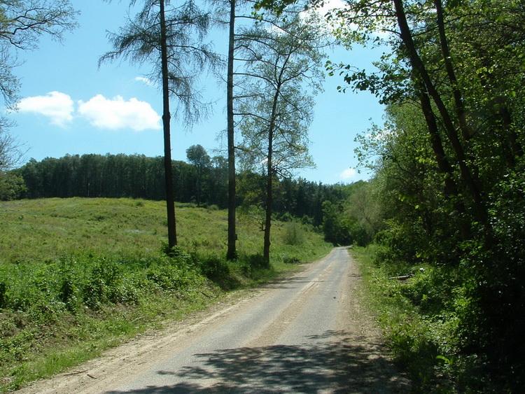 On the access road of Bakonynána village