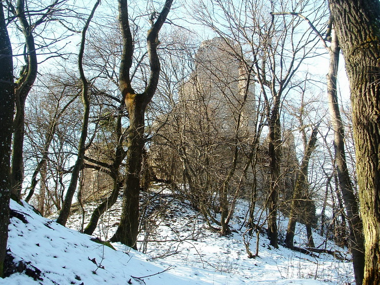 Abandoned walls in the forest: it is Vitányvár castle