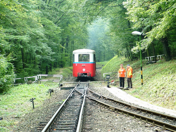 Railway line into the forest