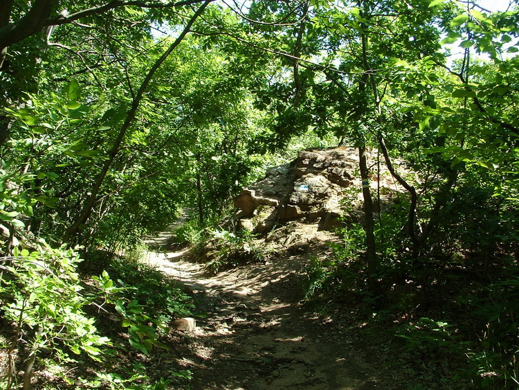 On a windind path on the top of the Köves-bérc Hill
