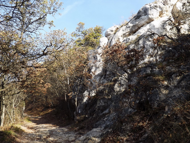 We climb on a stony path in the side of the Nagy-Kevély