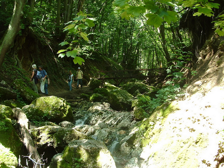 In the Gorge of Pilis