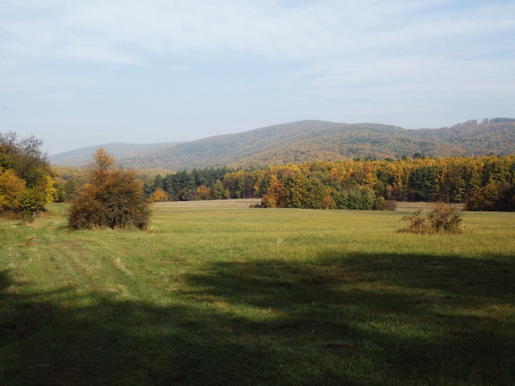 On the Meadow of Sikáros