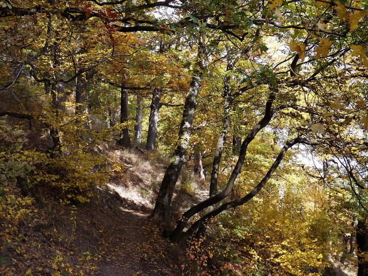 Narrow path on the side of Urak Asztala Mountain