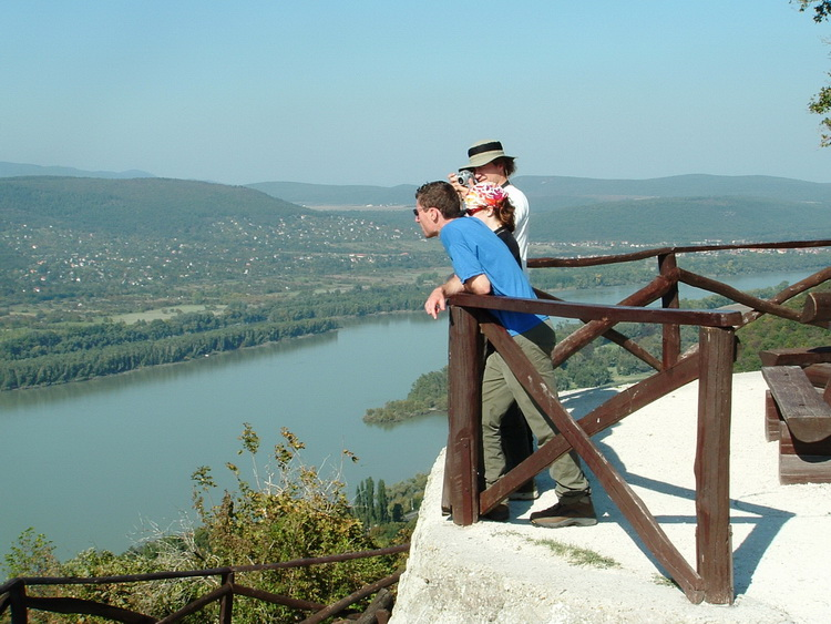 The panorama of Danube taken from the wall of the castle