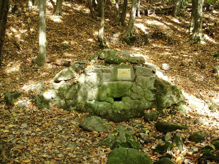 The Saj-kút Spring