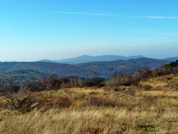 Panorama towards the Cserhát from the clearing