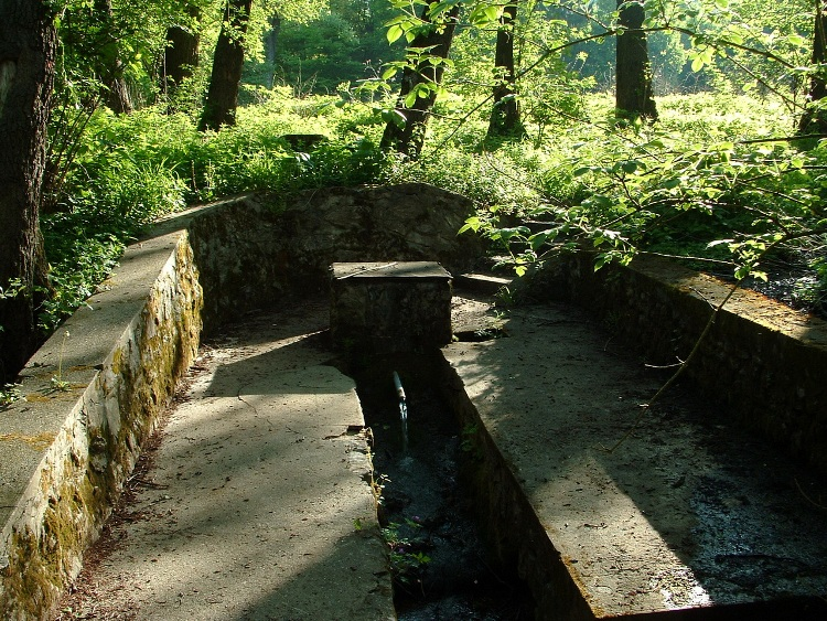 The abundant Lóczi-forrás Spring is located beside the asphalt road