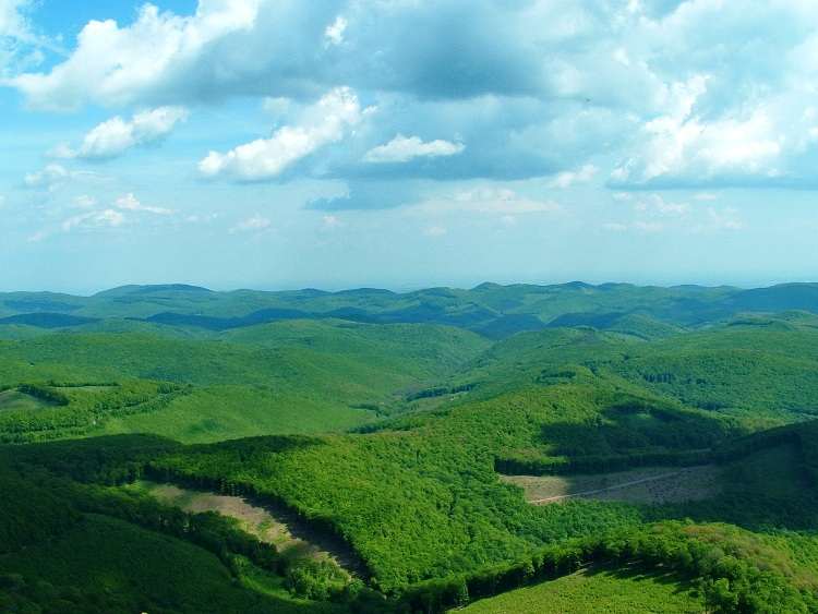 Panorama from the top of Tar-kő Mountain
