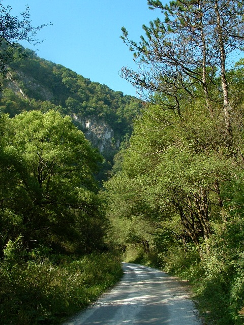 The asphalt road leads in a narrow valley towards Uppony-village