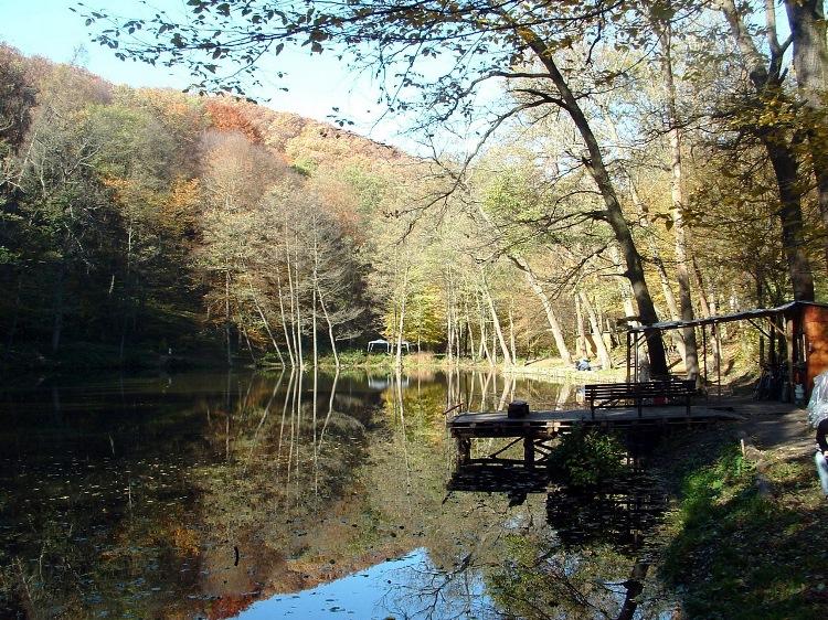 Fishing lake beside the worn asphalt road