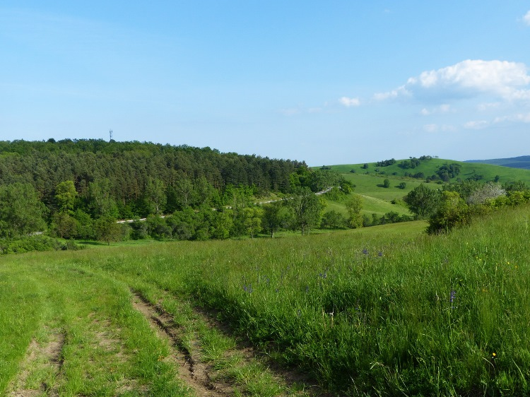 A retrospection towards the valley of Zádorfalva