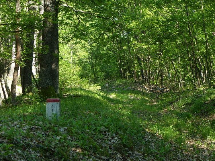 Marker stones on the Hungarian-Slovakian border