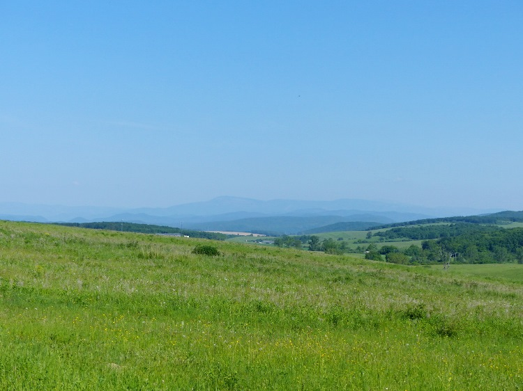 Panorama to the Slovakian mountains across the pasture