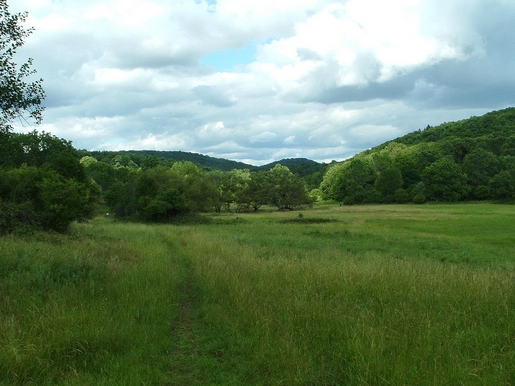 The wide meadows of the plateau