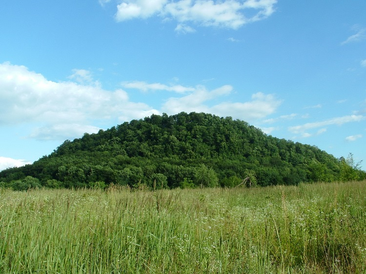 The forest covered hill of Szádvár fortress