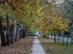 Dorog - A sínek melletti sétányszerű járdán indulunk tovább