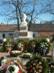Dorog - Petőfi szobor a költőről elnevezett terecske parkjában