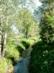 Dorog - A város határában folyik a Kenyér-mezei-patak