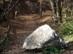 A Remete-szurdok sétaútját elrekesztő sziklatömb