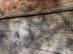 Márványtáblák a templom külső falán 2.