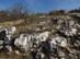 Sziklás hegyoldalban kapaszkodunk a Kevély-nyereg felé