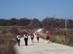Teljesítménytúrázók a Csobánkai-nyereg széles földútján