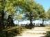Dobogókő - A turistaház mögötti kilátóterasz feljárója